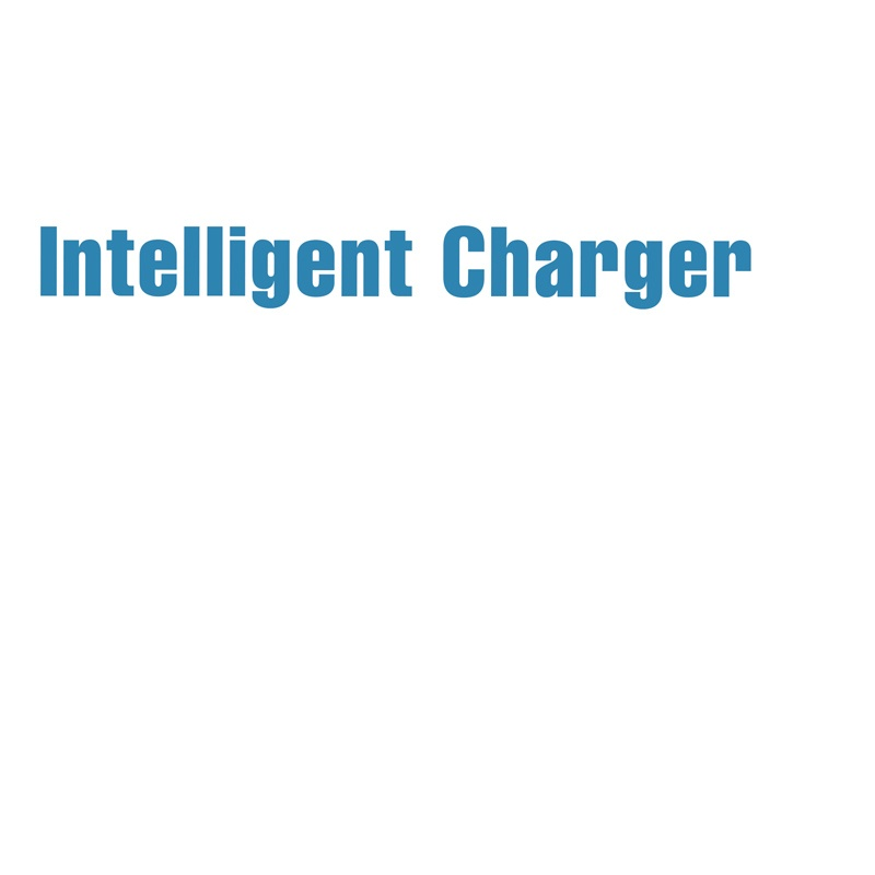 Intelligent Charger